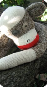 red heel sock monkey picture